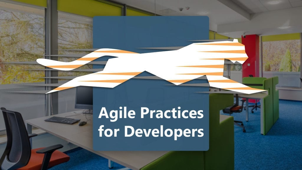 agile practices for developers
